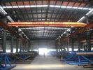 Het elektrische van de de Monorailworkshop van de Luchtbrugkraan Opheffen van het Staalbulding